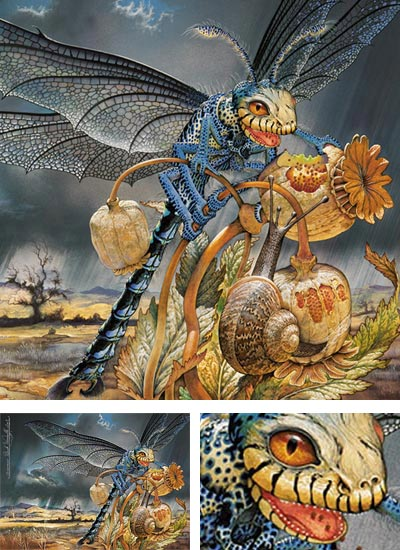 Patrick Woodroffe Lines And Colors