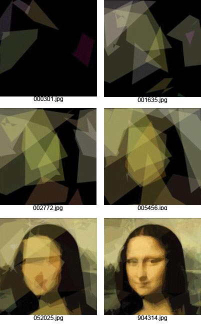 Genetic Programming: Evolution of Mona Lisa