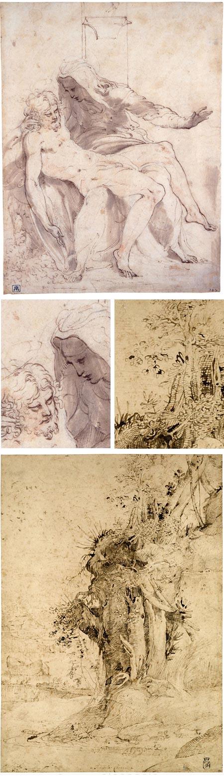 Rome After Raphael: Parmigianino, Annibale Carracci
