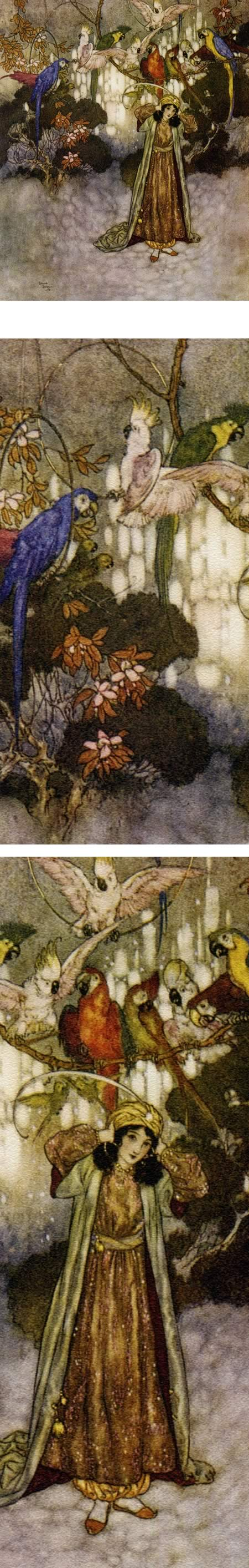 A Room Full of Parrots, Edmund Dulac, from Beauty and the Beast