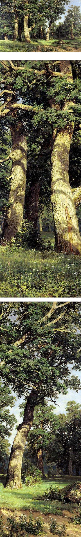 Oak Grove, Ivan Shishkin