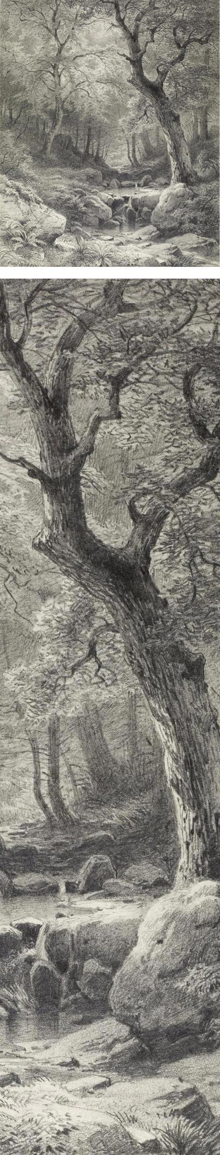 Forest Scene, Paul Weber