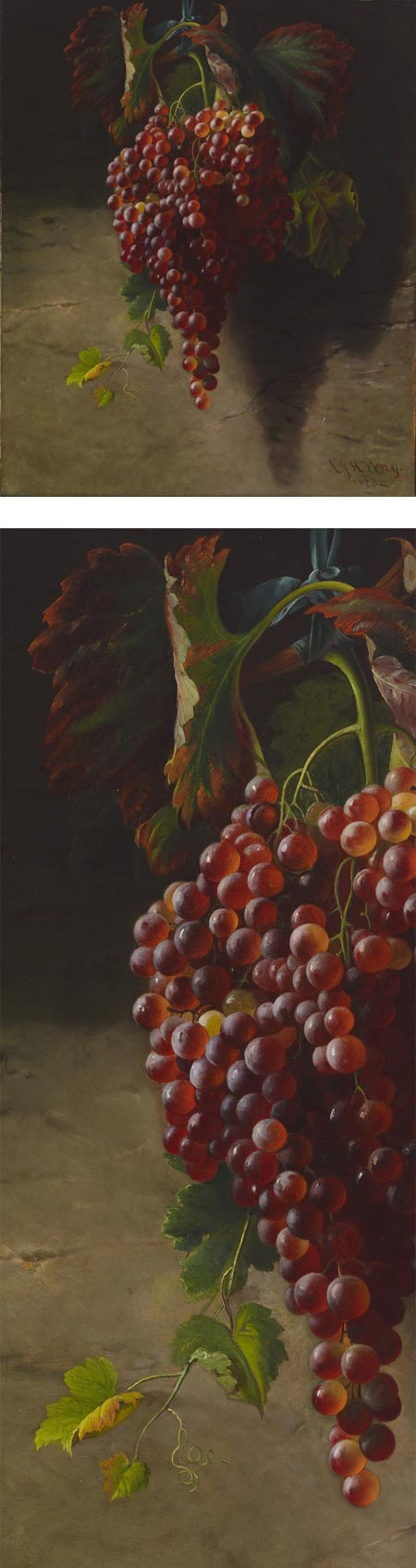 Bunch of Grapes, Andrew John Henry Way
