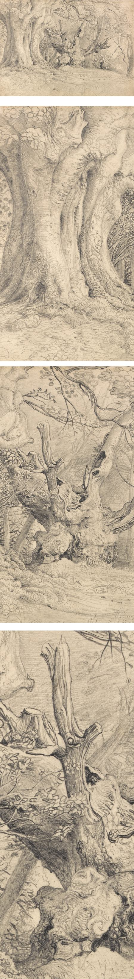 Ancient Trees, Lullingstone Park, Samuel Palmer