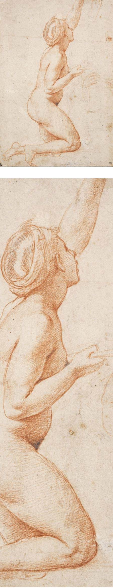 Kneeling Woman with her Left Arm Raised, Raphael (Raffaello Santi), drawing in red chalk