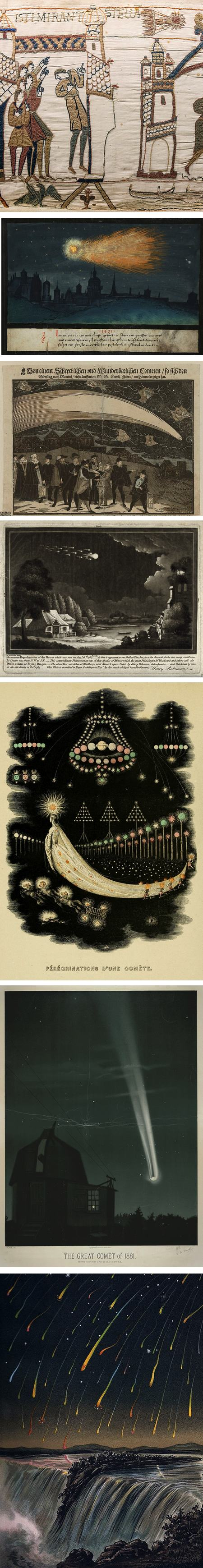 Flowers of the Sky: historic depictions of comets and meteors