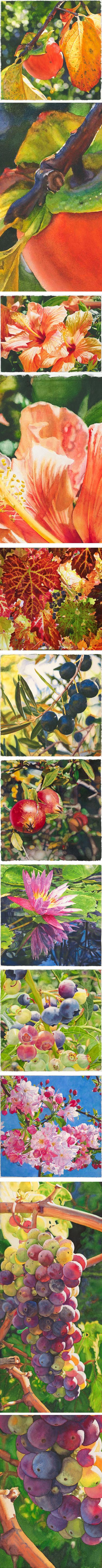 Cara Brown, watercolors