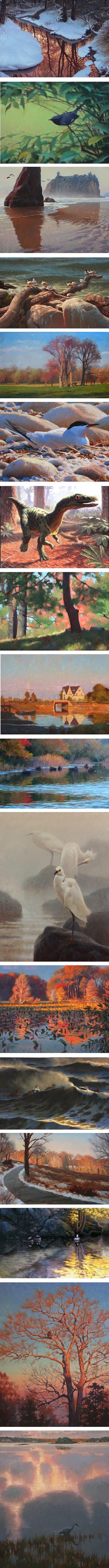 Sean Murtha, birds, nature art, plein air landscape painting