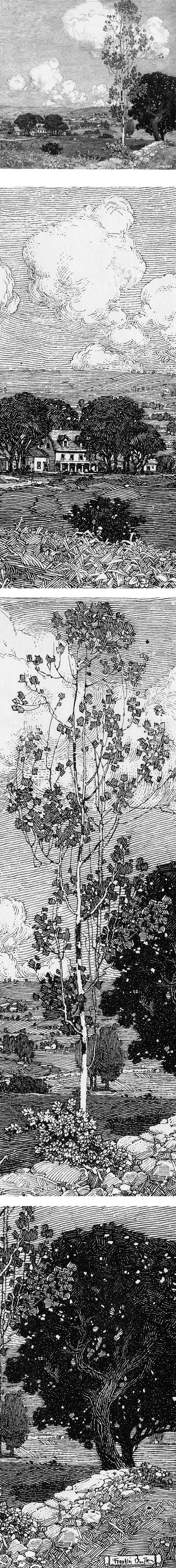 Franklin Booth pen and ink landscape drawing
