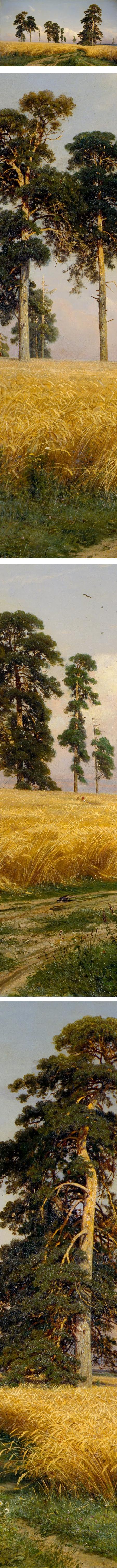 Rye,  Ivan Shishkin