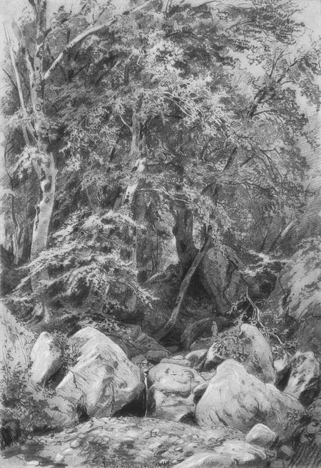 Trees by the Stream, Ivan Shishkin, pencil drawing