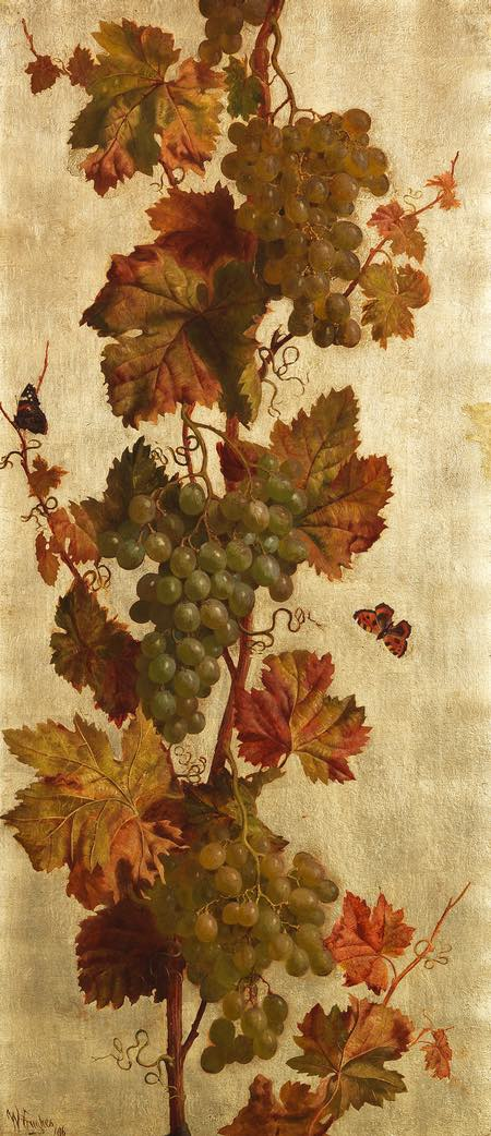 William Hughes grapevines, oil on canvas