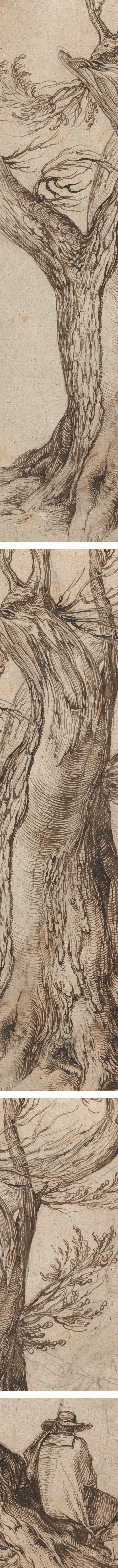 Chestnut Tree with some trees around it, Jacob de Gheyn, ink and chalk drawing (details)