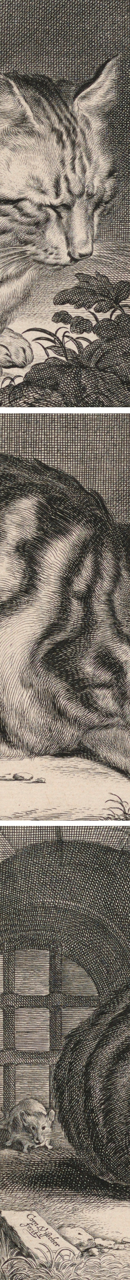 Cornelis Visscher, The Large Cat, engraving (details)